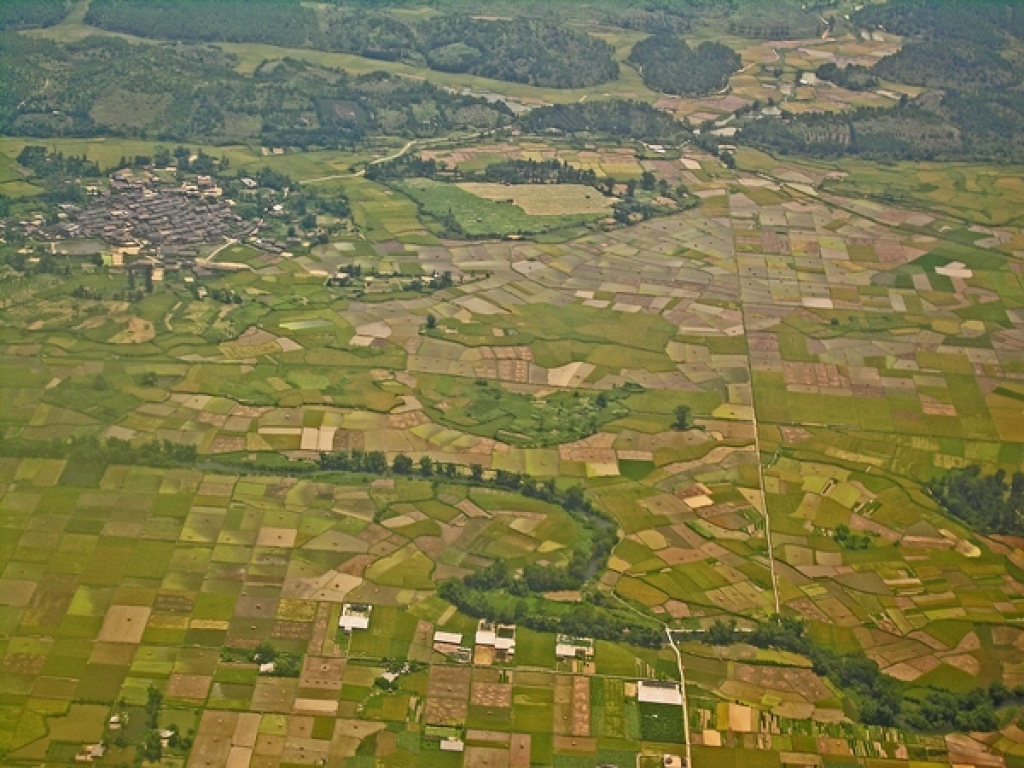 Typische Landschaft mit Reisfeldern